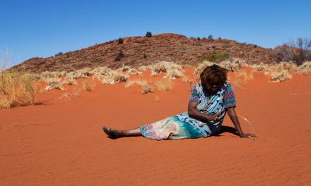 National Indigenous Visual Arts Action Plan 2021–25