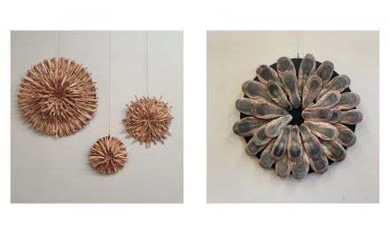 Illuminate Wollondilly: Waste to Art Project